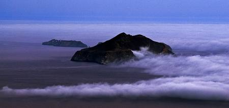 Santa Cruz Fog