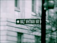 Whitman Way Green