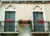 Two Ornate Doors with Geraniums