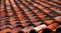 Roof Tile Abstract by Paul Gaither