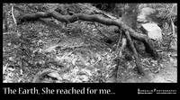 She Reached For Me...