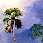 Palm Tree palette knife by Mazz Original Paintings