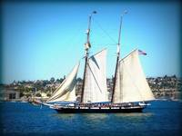 Clipper ship San Diego Harbor