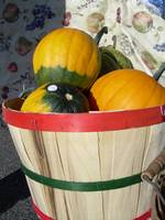Pumpkins in a Basket 851
