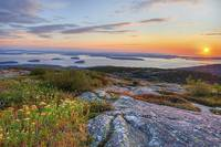 Cadillac Mountain Sunrise - Acadia National Park