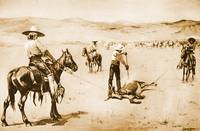 Branding Cattle - An Incident of Ranch Life (1888)