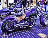 Purple Harley Davidson