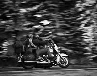 Harley Davidson Picture - Black & White