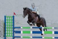 Horse Show Jumper-2 by Daniel Teetor