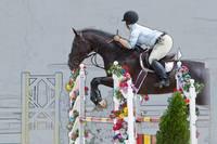 Horse Show Jumper-3 by Daniel Teetor