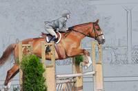 Horse Show Hunter by Daniel Teetor