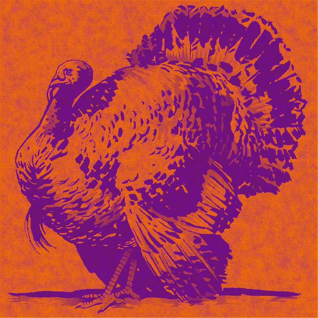 orange turkey