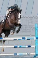 Horse Show Jumper-4 by Daniel Teetor