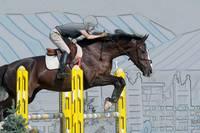 Horse Show Jumper-5 by Daniel Teetor