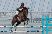 Horse Show Jumper-7 by Daniel Teetor