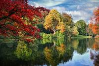 Autumn at Stourhead 1