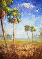 Cabbage Palm Trees