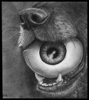 Dog and Eye Ball