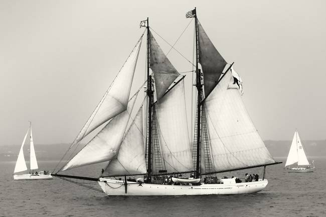 Sailboat Art Black And White Photography