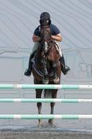 Horse Show Jumper-9 by Daniel Teetor