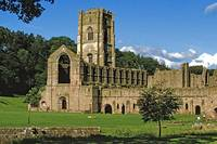 Fountains Abbey in Summer 10 by Priscilla Turner