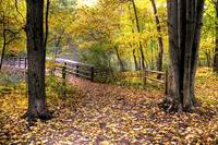 Autumn Foot Bridge