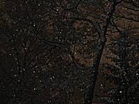 NightSnow Series - Natural