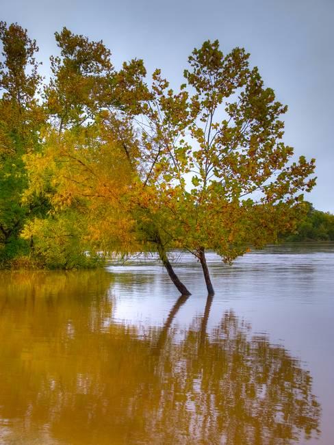 Missouri Flood