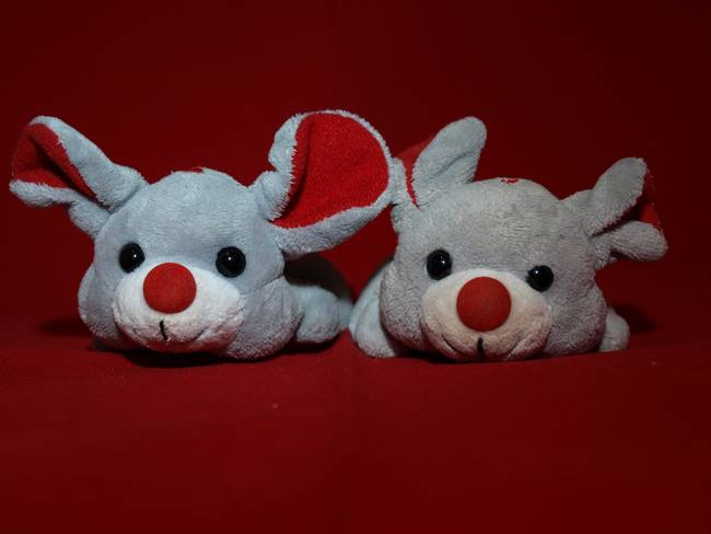 mice )waiting for Christmas(