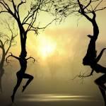 """""""Dancing Trees"""" by zenin"""
