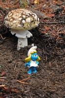 Smurfette's house