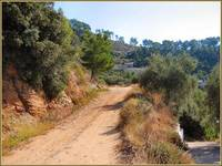 Thassos Greece. Local Roads.