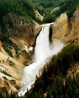 Upper Yellowstone Falls ~ Oil Painting Effect