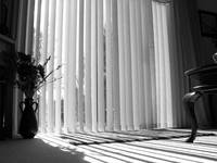 Sun through the blinds in black and white.