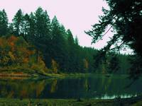 Lacamas Lake Reflection in Orange and Green