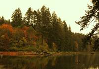 Lacamas Lake Orange Refections