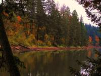 Lacamas Lake Refections