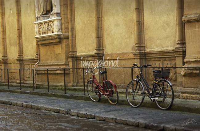 Florence Bicycles