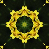 Large Yellow Wildflower Kaleidoscope Art 1