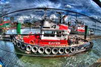 Tug In Harbour
