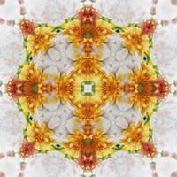 Gold Chrysanthemum Kaleidoscope Art 1
