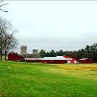 Roadside Farm by Donnie Shackleford