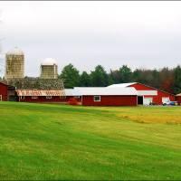 Bethel Farms by Donnie Shackleford