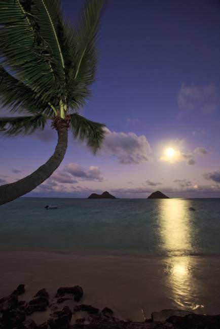 Pacific moonrise