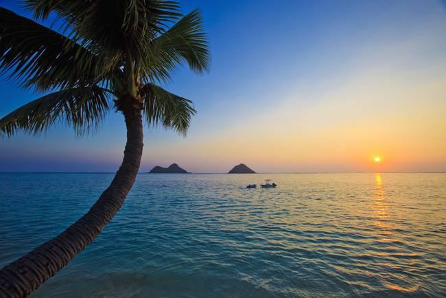 Hawaiian Sunrise At Lanikai Beach By Tomas Del Amo