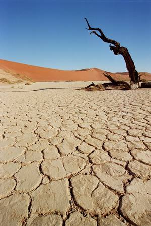 Parched Earth of Dead Vlei by John Macdonald