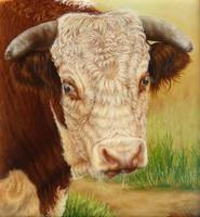 Jackpot The Hereford Bull