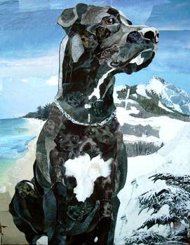 Great Dane by artist Marjorie Pesek. Giclee print, art prints, collage