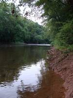 Monocacy River Bottom