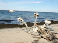 sea sculptures